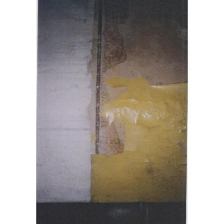 Patalpų sienų (laiptinė) polichrominis dažymas