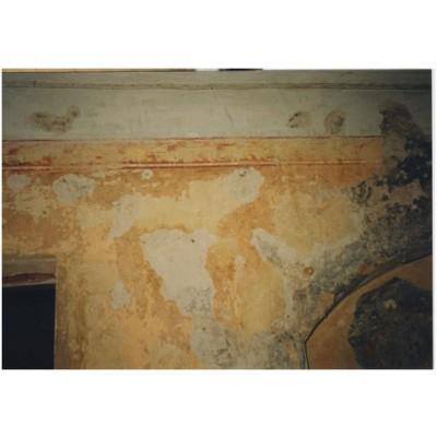 XX a. pr. tapybinis trafaretinis augalinių motyvų frizas